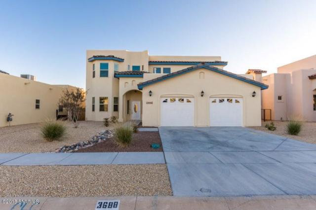 3688 Santa Adriana Avenue, Las Cruces, NM 88012 (MLS #1808091) :: Steinborn & Associates Real Estate