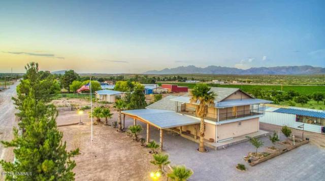 8131 El Milagro, Mesilla Park, NM 88047 (MLS #1808092) :: Austin Tharp Team
