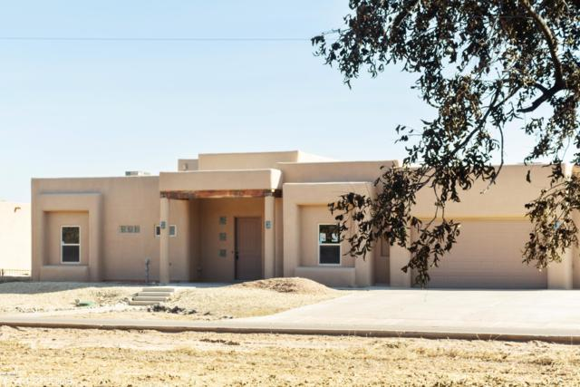 126 Blacktail Deer Avenue, Las Cruces, NM 88007 (MLS #1808110) :: Steinborn & Associates Real Estate