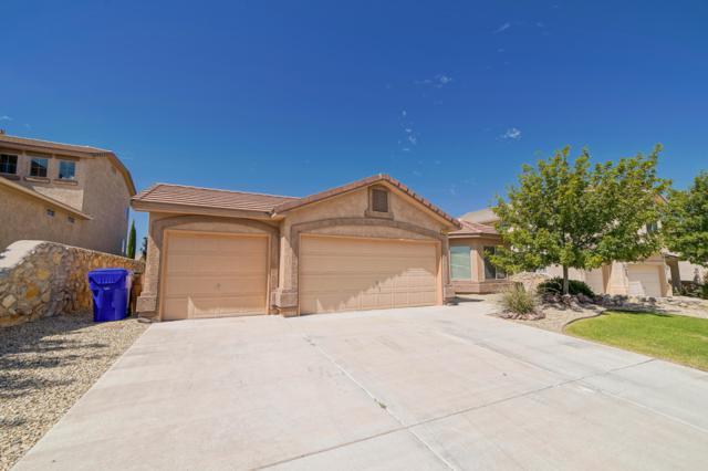 2515 Candlewood Circle, Las Cruces, NM 88011 (MLS #1808121) :: Austin Tharp Team