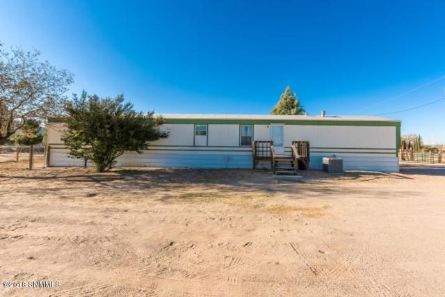 665 Fossil View Road, Las Cruces, NM 88007 (MLS #1808137) :: Steinborn & Associates Real Estate