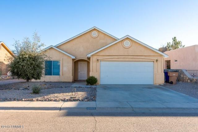 4469 Camino Dos Vidas, Las Cruces, NM 88012 (MLS #1808148) :: Austin Tharp Team