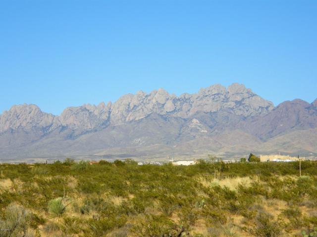 5495 George Catlin Road, Las Cruces, NM 88011 (MLS #1808166) :: Steinborn & Associates Real Estate