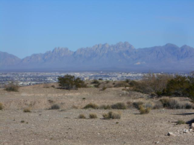 Lot #4A Tingo Circle, Las Cruces, NM 88007 (MLS #1808201) :: Steinborn & Associates Real Estate
