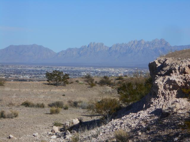 Lot 2 Tingo Circle, Las Cruces, NM 88007 (MLS #1808202) :: Steinborn & Associates Real Estate