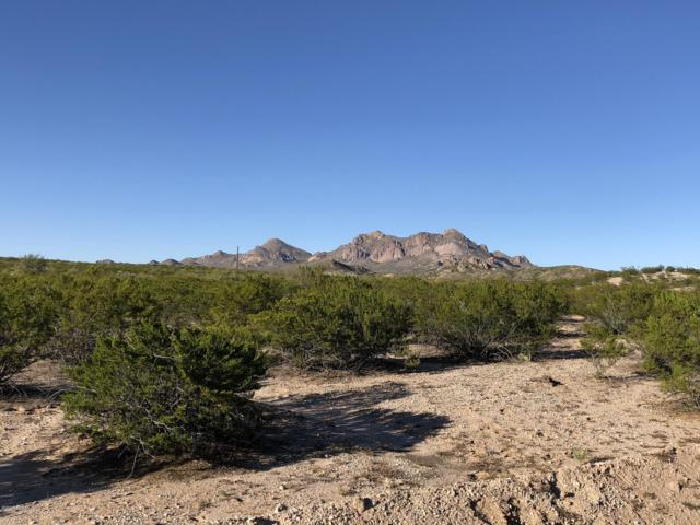 2018 Eclipse Road, Las Cruces, NM 88012 (MLS #1808219) :: Steinborn & Associates Real Estate