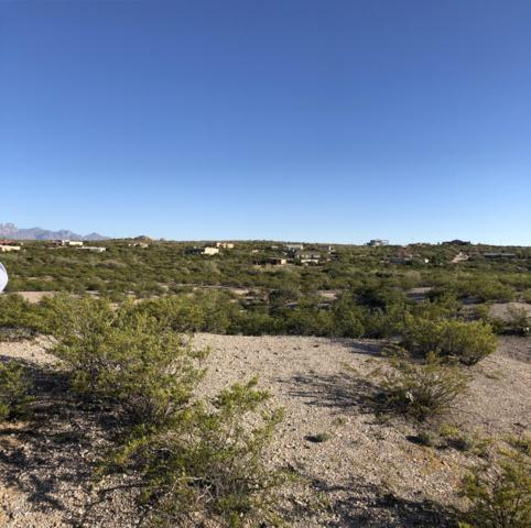 2074 Eclipse Road, Las Cruces, NM 88012 (MLS #1808220) :: Steinborn & Associates Real Estate