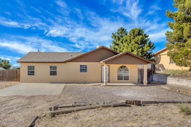 5221 Apache Trail, Las Cruces, NM 88012 (MLS #1808228) :: Steinborn & Associates Real Estate