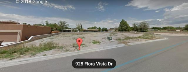 928 Flora Vista Drive, Las Cruces, NM 88007 (MLS #1808240) :: Steinborn & Associates Real Estate