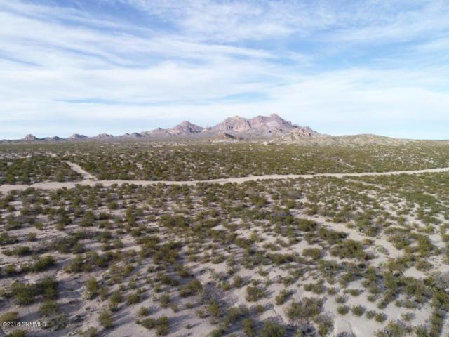 2299 Guamis Road, Dona Ana, NM 88032 (MLS #1808251) :: Steinborn & Associates Real Estate
