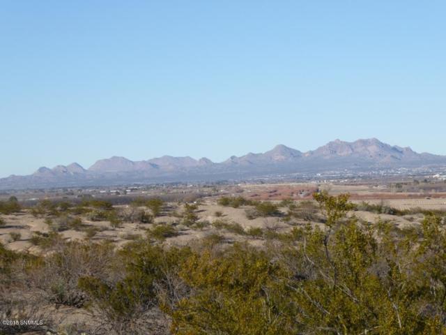 0000 Thielman Road, Las Cruces, NM 88005 (MLS #1808273) :: Steinborn & Associates Real Estate