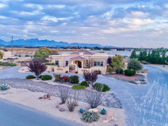 5521 Redfox Road, Las Cruces, NM 88007 (MLS #1808285) :: Steinborn & Associates Real Estate