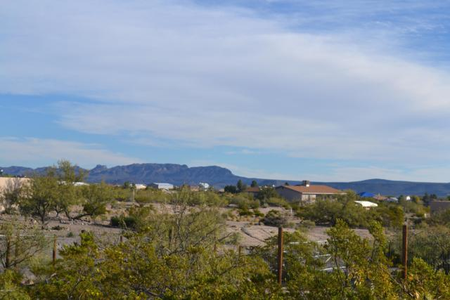 811 Hawthorne Drive, Elephant Butte, NM 87935 (MLS #1808290) :: Steinborn & Associates Real Estate