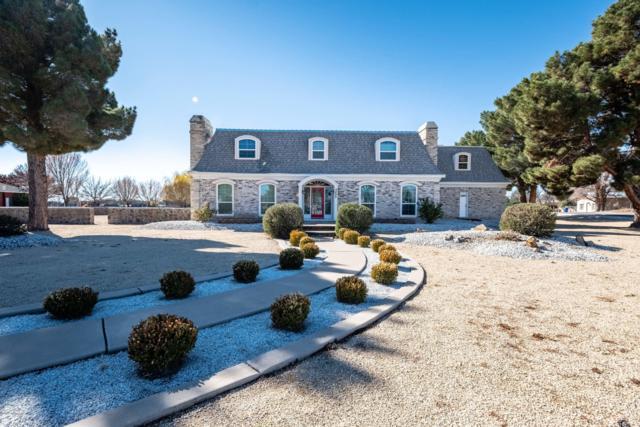 4899 Raintree Lane, Las Cruces, NM 88007 (MLS #1808293) :: Steinborn & Associates Real Estate
