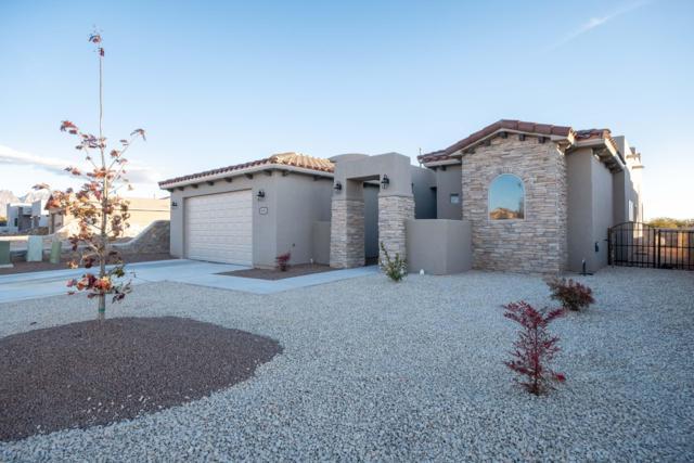 4516 Mesa Prieta Drive, Las Cruces, NM 88011 (MLS #1808294) :: Austin Tharp Team