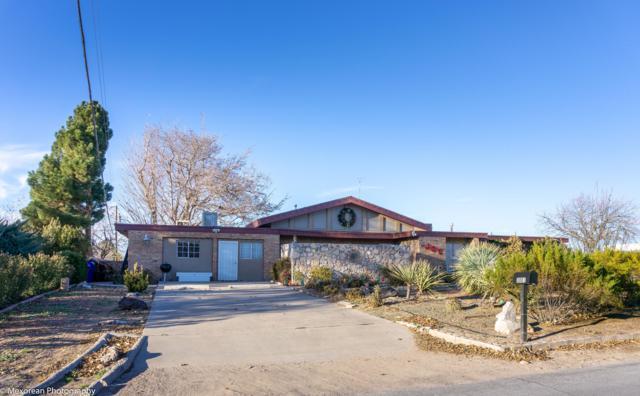 3001 Broadmoor Drive, Las Cruces, NM 88004 (MLS #1808314) :: Steinborn & Associates Real Estate