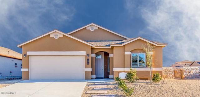 876 Holly Park Avenue, Santa Teresa, NM 88008 (MLS #1808328) :: Steinborn & Associates Real Estate