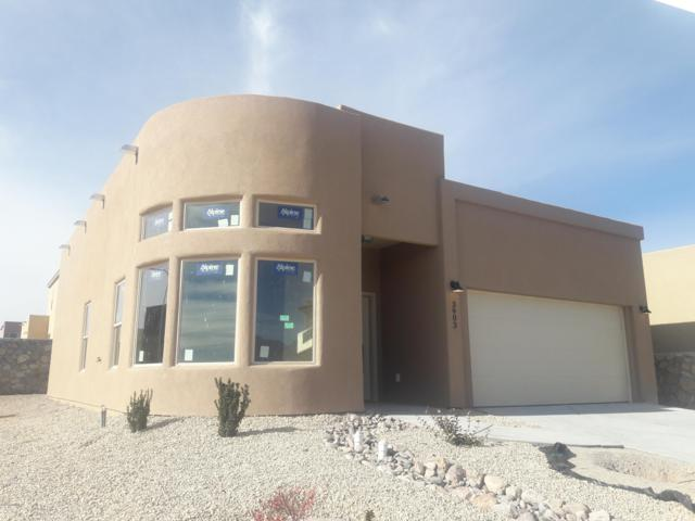 3903 Agua Azul Court, Las Cruces, NM 88012 (MLS #1808335) :: Steinborn & Associates Real Estate