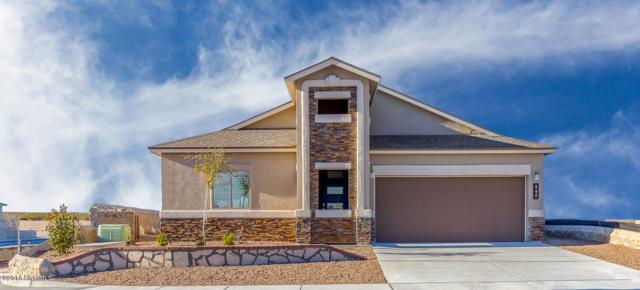 874 Holly Park Avenue, Sunland Park, NM 88063 (MLS #1808342) :: Steinborn & Associates Real Estate