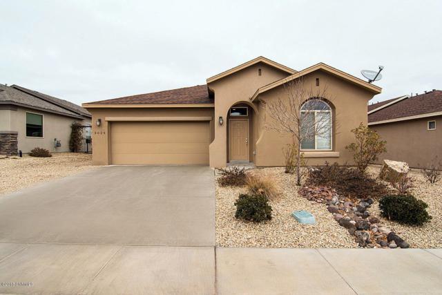 3029 Agua Ladoso Avenue, Las Cruces, NM 88012 (MLS #1808351) :: Steinborn & Associates Real Estate