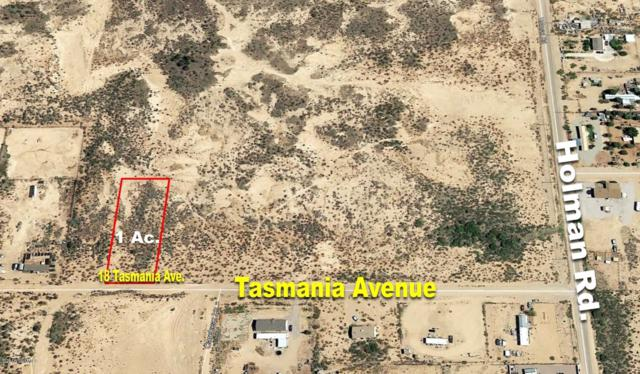 18 Tasmania Avenue, Las Cruces, NM 88012 (MLS #1808375) :: Better Homes and Gardens Real Estate - Steinborn & Associates