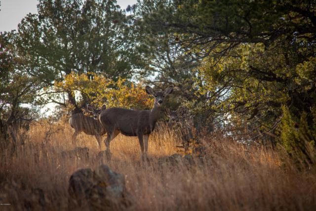 13 Jomar Ranch Rd., SILVER CITY, NM 88061 (MLS #1808383) :: Arising Group Real Estate Associates