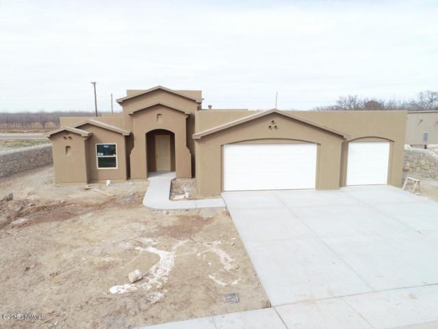1442 Santanova, Las Cruces, NM 88005 (MLS #1808385) :: Steinborn & Associates Real Estate