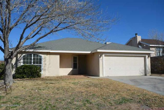 707 Horizon View Drive, Las Cruces, NM 88011 (MLS #1808390) :: Steinborn & Associates Real Estate