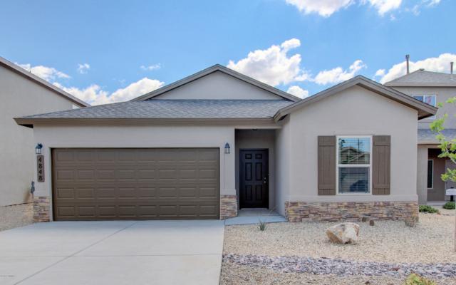 7005 Silver Spur, Las Cruces, NM 88012 (MLS #1808393) :: Steinborn & Associates Real Estate