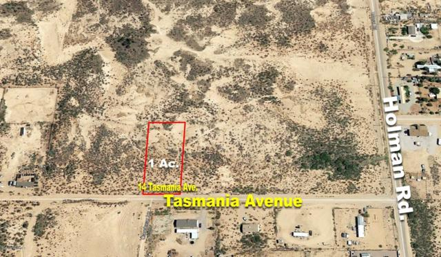 14 Tasmania Avenue, Las Cruces, NM 88012 (MLS #1900017) :: Agave Real Estate Group