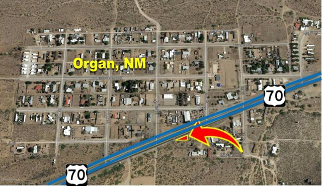 16026 Highway 70, Organ, NM 88052 (MLS #1900029) :: Steinborn & Associates Real Estate