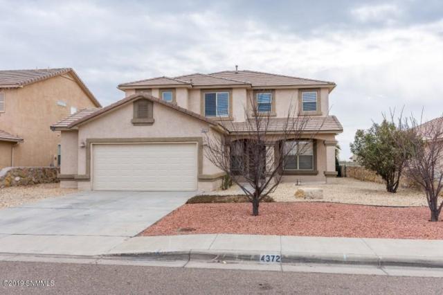 4372 Soda Spring Drive, Las Cruces, NM 88011 (MLS #1900030) :: Steinborn & Associates Real Estate