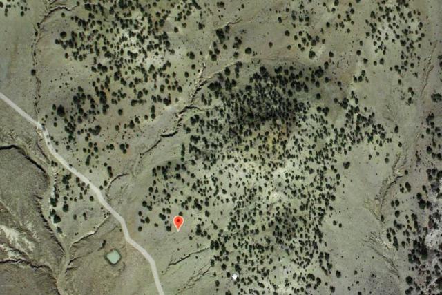 00 No Name, DATIL, NM 87821 (MLS #1900037) :: Better Homes and Gardens Real Estate - Steinborn & Associates