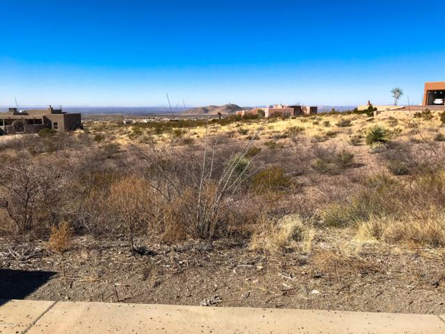 4910 Mother Lode Trail, Las Cruces, NM 88011 (MLS #1900039) :: Steinborn & Associates Real Estate