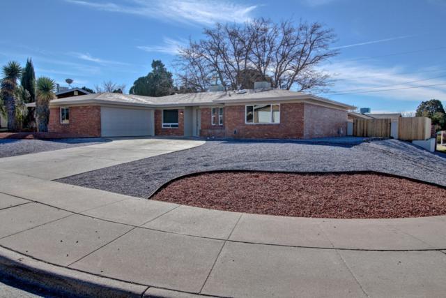 1800 Camino Del Rex, Las Cruces, NM 88001 (MLS #1900061) :: Steinborn & Associates Real Estate