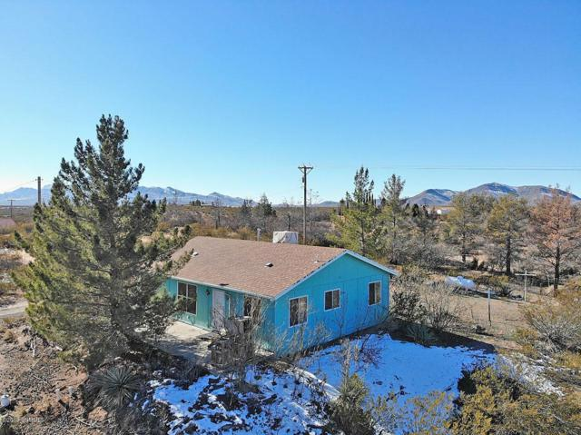 1213 Alta Vista Drive, Chaparral, NM 88081 (MLS #1900093) :: Steinborn & Associates Real Estate