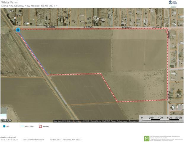 000 Ward Road, Vado, NM 88072 (MLS #1900109) :: Steinborn & Associates Real Estate