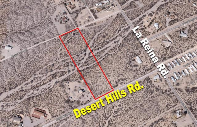 1485 Desert Hills Road, Las Cruces, NM 88012 (MLS #1900126) :: Steinborn & Associates Real Estate