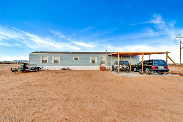 1052 Sunrise Drive, Chaparral, NM 88081 (MLS #1900152) :: Steinborn & Associates Real Estate