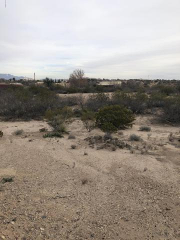 0000 Justin Lane Lot #1, Las Cruces, NM 88007 (MLS #1900156) :: Steinborn & Associates Real Estate