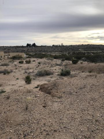 0000 Justin Lane Lot #17, Las Cruces, NM 88007 (MLS #1900159) :: Steinborn & Associates Real Estate