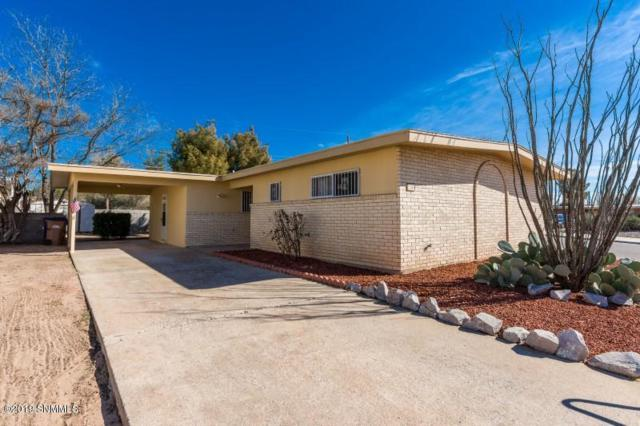 1155 Larry Drive, Las Cruces, NM 88001 (MLS #1900160) :: Steinborn & Associates Real Estate
