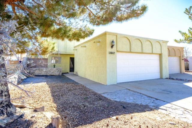 3012 Hillrise Drive, Las Cruces, NM 88011 (MLS #1900180) :: Austin Tharp Team