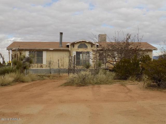 6915 Gopher Road, Las Cruces, NM 88012 (MLS #1900185) :: Austin Tharp Team