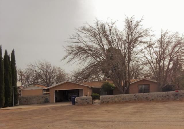 105 Butler Heights Road, Chaparral, NM 88081 (MLS #1900187) :: Steinborn & Associates Real Estate