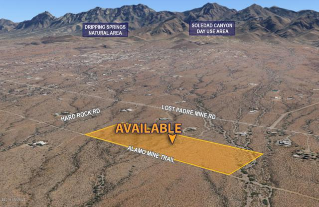 5745 Alamo Mine Trail, Las Cruces, NM 88011 (MLS #1900190) :: Arising Group Real Estate Associates