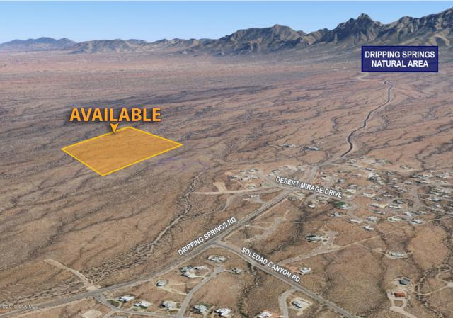 XXXX N Dripping Springs Road, Las Cruces, NM 88011 (MLS #1900192) :: Steinborn & Associates Real Estate