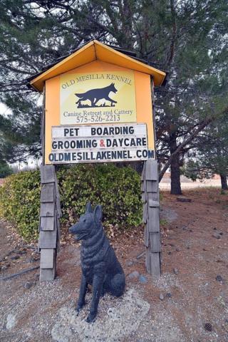 3036 Avenida De Mesilla, Las Cruces, NM 88005 (MLS #1900217) :: Steinborn & Associates Real Estate