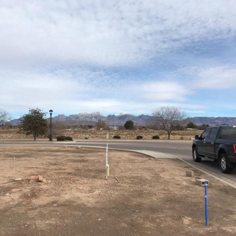 1324 San Bonifacio, Las Cruces, NM 88005 (MLS #1900223) :: Steinborn & Associates Real Estate