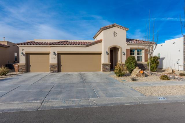 3737 Albion Avenue, Las Cruces, NM 88012 (MLS #1900248) :: Steinborn & Associates Real Estate